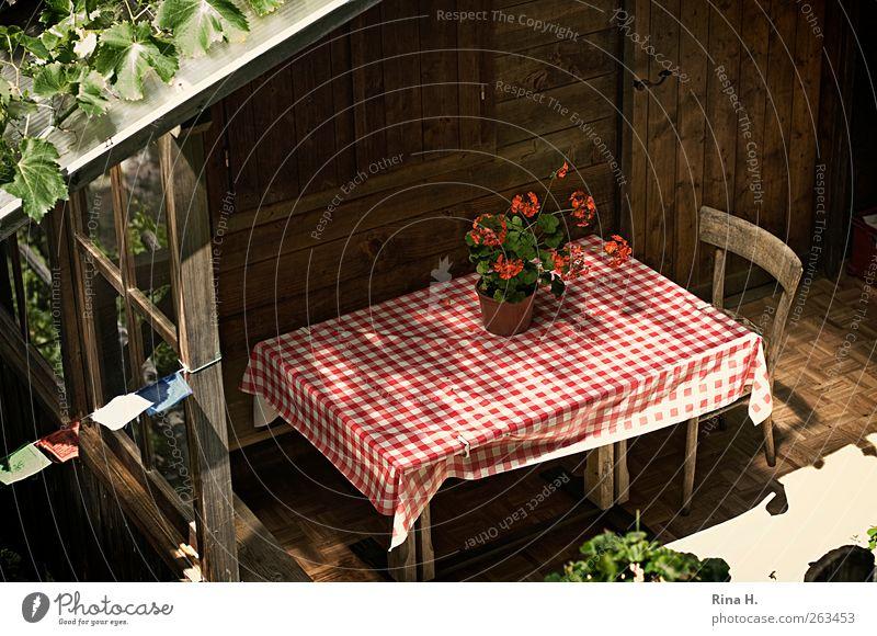 Idylle Häusliches Leben Wohnung Haus Stuhl Tisch Holzhaus Terrasse Gartenhaus Sommer Schönes Wetter Topfpflanze Pelargonie hell rot urig gemütlich Gebetsfahnen