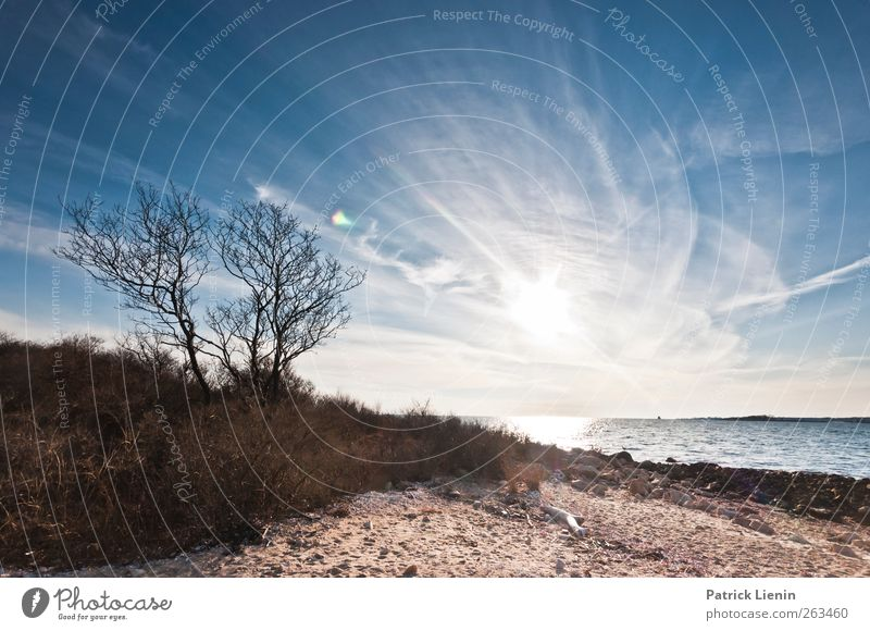 In der Ferne... Umwelt Natur Landschaft Pflanze Urelemente Sand Luft Wasser Himmel Sonne Sonnenfinsternis Sonnenaufgang Sonnenuntergang Sonnenlicht Frühling