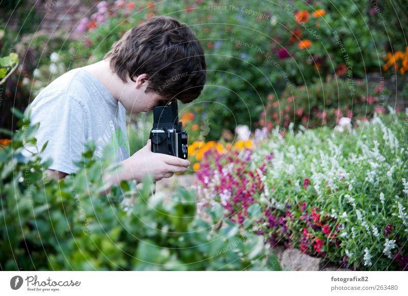 blumen und mehr Mensch Jugendliche grün Pflanze Blume Freude schwarz ruhig Erwachsene Freiheit Garten Blüte Park maskulin Ausflug frei