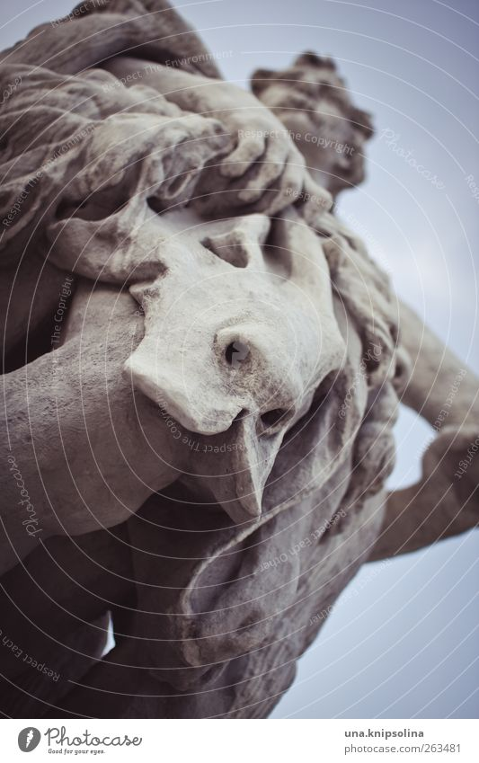 Auch unter der Löwenhaut ragen dem Esel die Ohren hervor. Kunst Skulptur Tier Tiergesicht Stein festhalten Fell skulptural Mann Figur Farbfoto Außenaufnahme