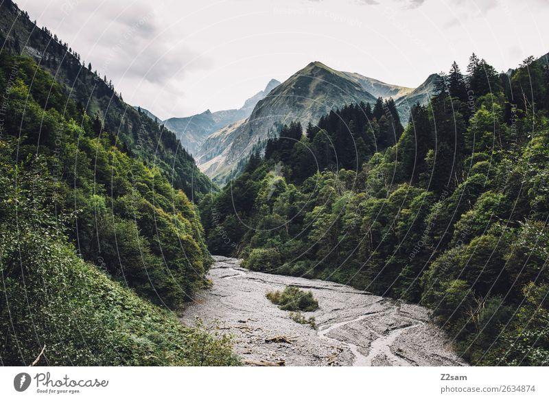Trettlachtal im Allgäu Himmel Natur Ferien & Urlaub & Reisen grün Landschaft Wolken Einsamkeit Berge u. Gebirge Umwelt natürlich wandern Idylle Abenteuer Gipfel