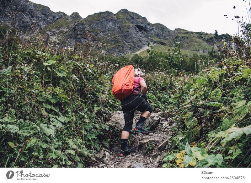 Junge Frau auf Fernwanderung Freizeit & Hobby Berge u. Gebirge wandern Jugendliche 18-30 Jahre Erwachsene Natur Landschaft schlechtes Wetter Sträucher Alpen
