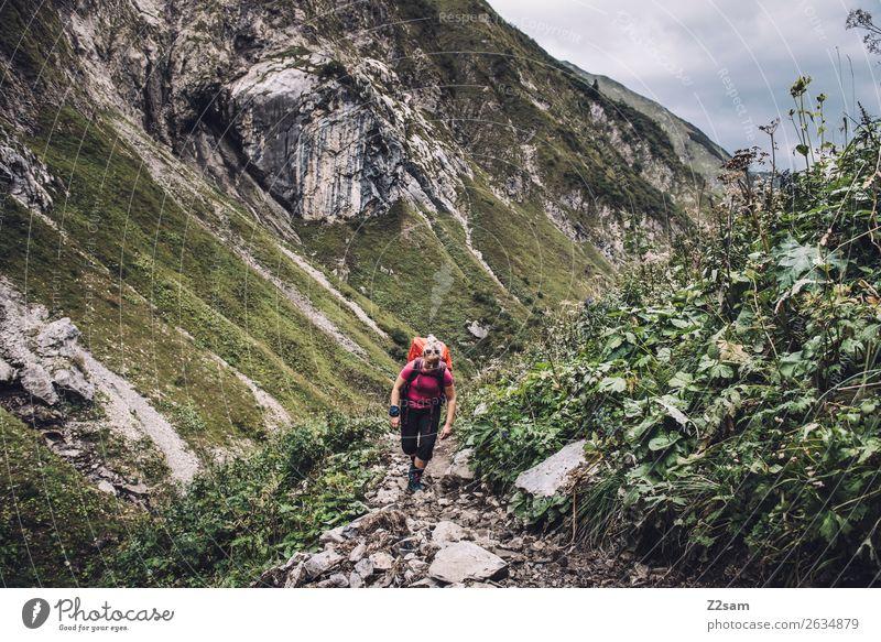 Frau auf Alpenüberquerung Ferien & Urlaub & Reisen Abenteuer Berge u. Gebirge wandern Junge Frau Jugendliche 18-30 Jahre Erwachsene Natur Landschaft Sträucher