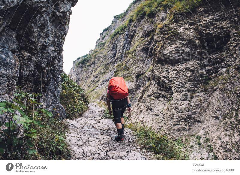 Alpenüberquerung Ferien & Urlaub & Reisen wandern Junge Frau Jugendliche 18-30 Jahre Erwachsene Natur Landschaft schlechtes Wetter Felsen Berge u. Gebirge