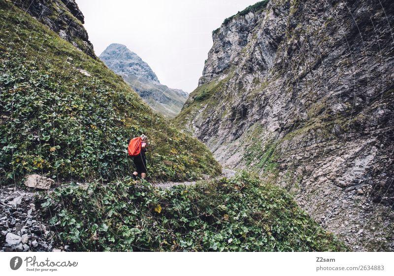 Aufstieg zur Kemptner Hütte Berge u. Gebirge wandern Junge Frau Jugendliche 30-45 Jahre Erwachsene Natur Landschaft Sträucher Felsen Alpen Rucksack Wanderschuhe
