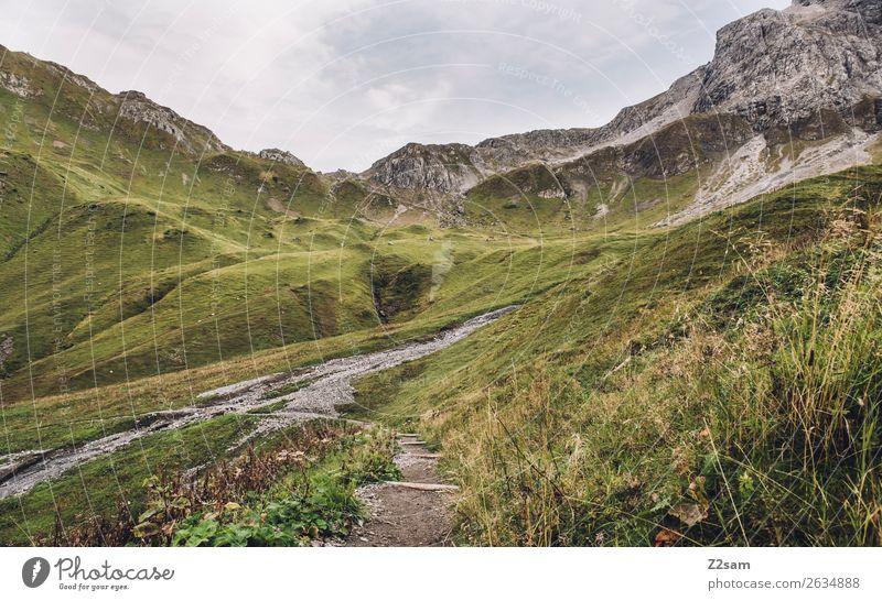 Aufstieg zum Mädlejoch wandern Natur Landschaft Sträucher Wiese Alpen Berge u. Gebirge Gipfel ästhetisch frisch gigantisch hoch nachhaltig grün Abenteuer