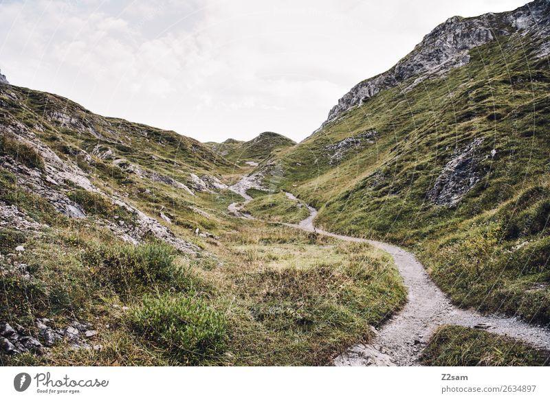 Aufstieg zum Mädlejoch Abenteuer wandern Natur Landschaft Herbst Alpen Berge u. Gebirge Gipfel Ferne Unendlichkeit hoch grün Einsamkeit Idylle nachhaltig ruhig