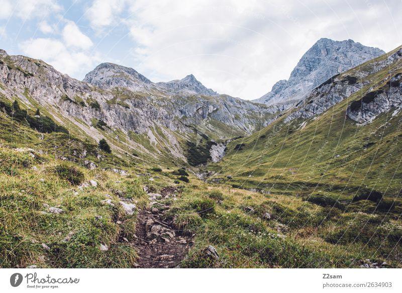 Krottenkopf im Allgäu Natur Landschaft Erholung Einsamkeit Ferne Berge u. Gebirge Wege & Pfade Wiese Felsen wandern Idylle Abenteuer groß hoch Alpen Bergsteigen