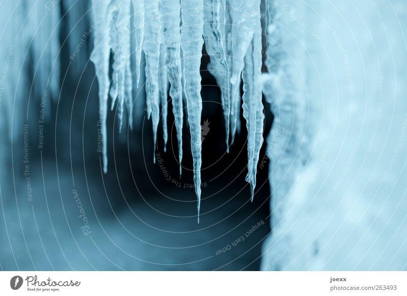 Zapfenstreich Natur blau weiß Winter schwarz kalt Eis Wassertropfen Frost fest gefroren Flüssigkeit Eiszapfen Eiszeit