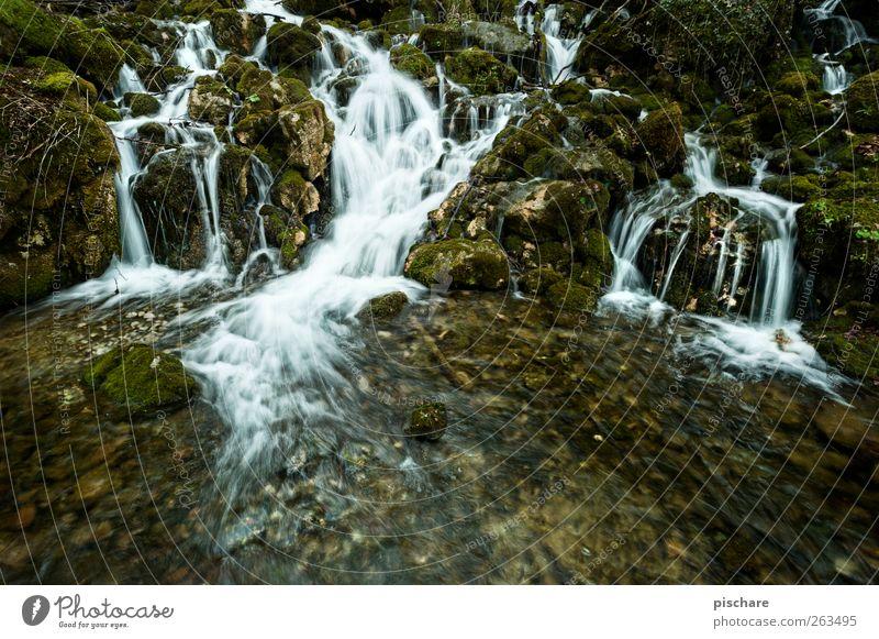 Natur (ohne Diplom) Wasser Landschaft Moos exotisch Bach Wasserfall