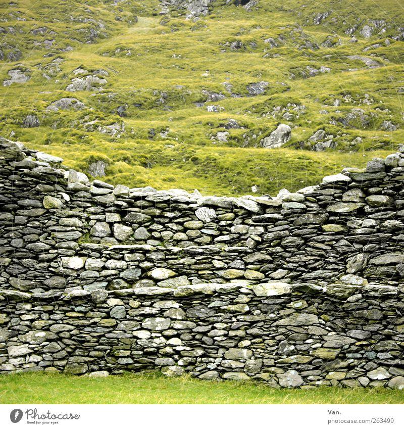 Mau(r)erwerk Umwelt Landschaft Pflanze Gras Wiese Hügel Felsen Republik Irland Ruine Mauer Wand Steinmauer alt grau grün Schutz Farbfoto mehrfarbig