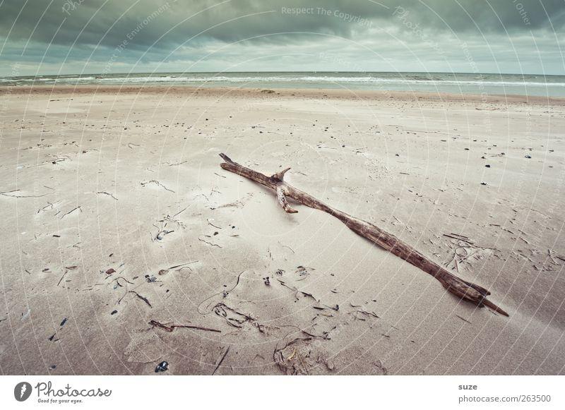 Stockfoto Ferne Umwelt Natur Landschaft Urelemente Sand Luft Wasser Himmel Wolken Horizont Winter Klima Wetter Wind Küste Strand Ostsee Meer Holz liegen trocken