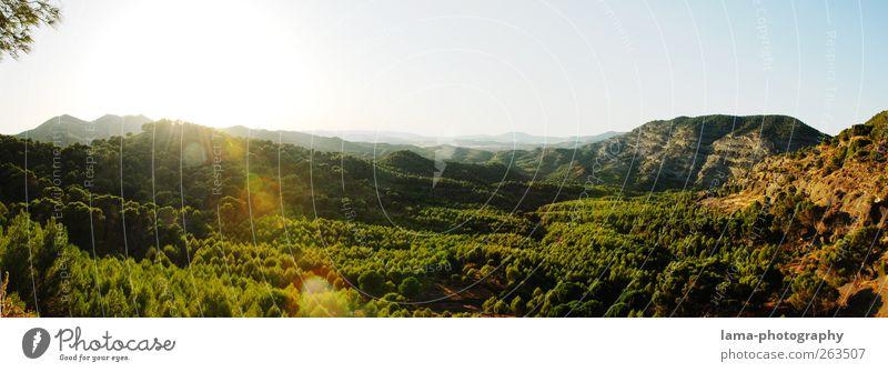 El valle [XXXI] Himmel Natur grün schön Baum Sonne Wald Landschaft Berge u. Gebirge Reisefotografie Aussicht Spanien Panorama (Bildformat) Tal Blendenfleck unberührt