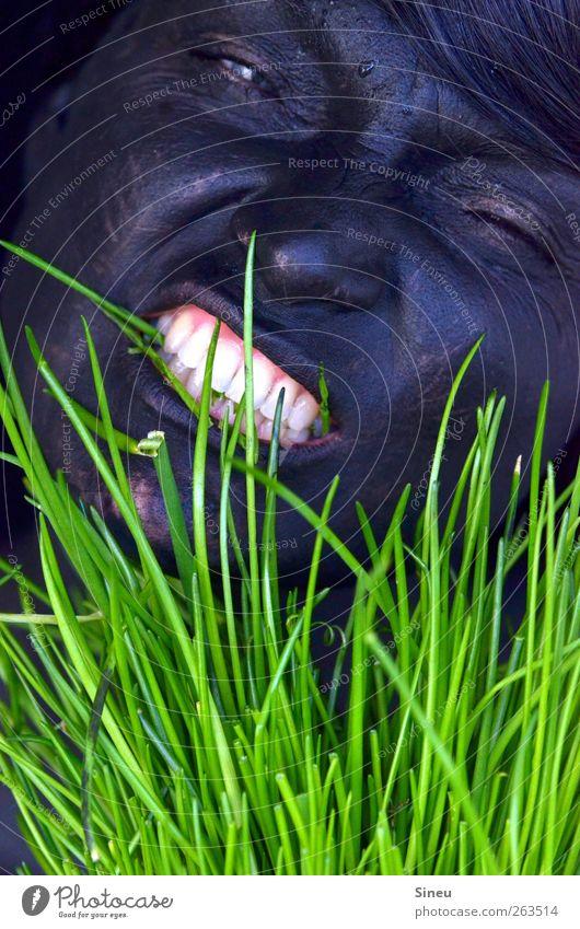 Die beisst nicht, die will nur spielen. Mensch Frau weiß grün schwarz Erwachsene Gesicht dunkel feminin Gras Essen außergewöhnlich verrückt Gesunde Ernährung Symbole & Metaphern Zähne