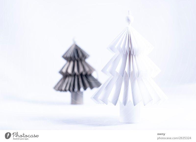 the 2 trees Natur Weihnachten & Advent Pflanze Landschaft weiß Baum ruhig Religion & Glaube Umwelt Feste & Feiern Freundschaft Freizeit & Hobby