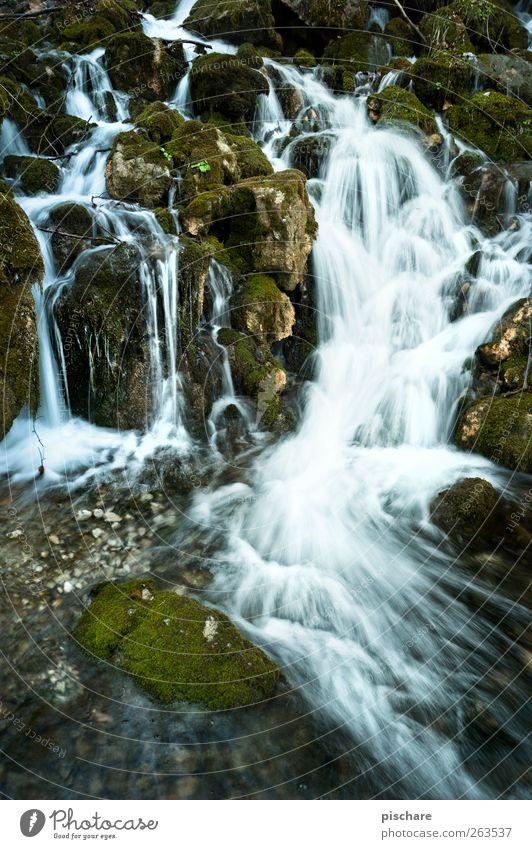 Lass laufen Natur Urelemente Wasser Moos Bach Wasserfall fließen Menschenleer Stein Farbfoto Außenaufnahme Langzeitbelichtung Bewegungsunschärfe Weitwinkel