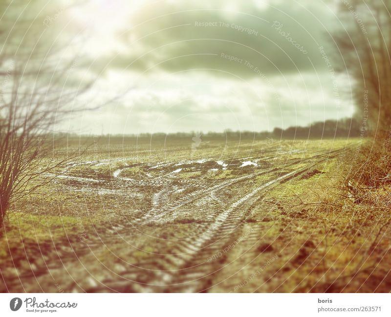 Ipweger Moor Himmel Natur Pflanze Wolken Einsamkeit gelb Landschaft kalt grau Traurigkeit Erde Deutschland braun Wetter Feld Europa