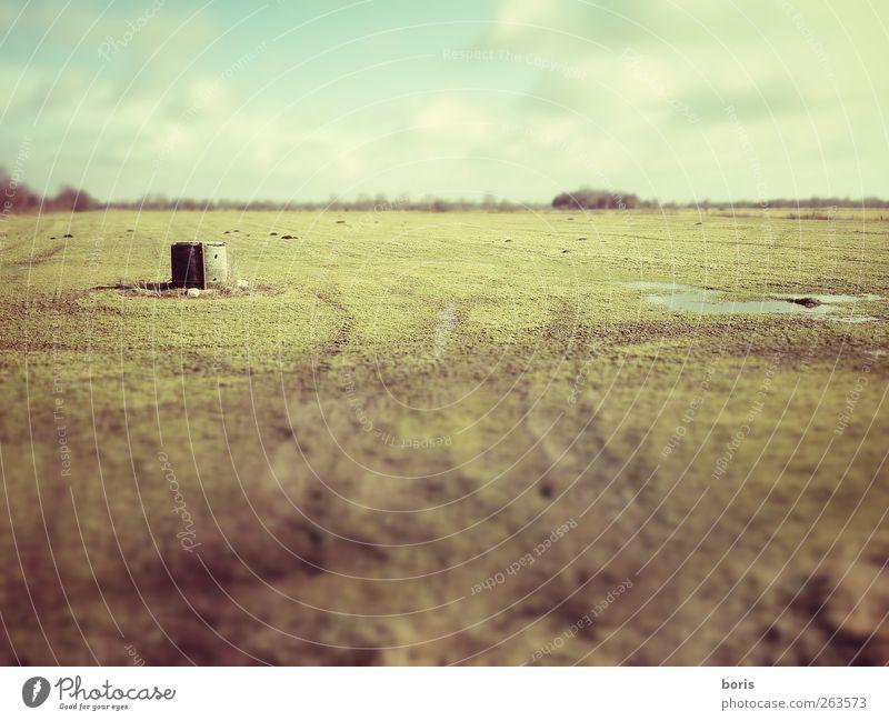 Ipweger Moor Himmel Natur alt Winter Wolken Einsamkeit gelb Landschaft kalt Gefühle grau Gras Traurigkeit träumen braun warten