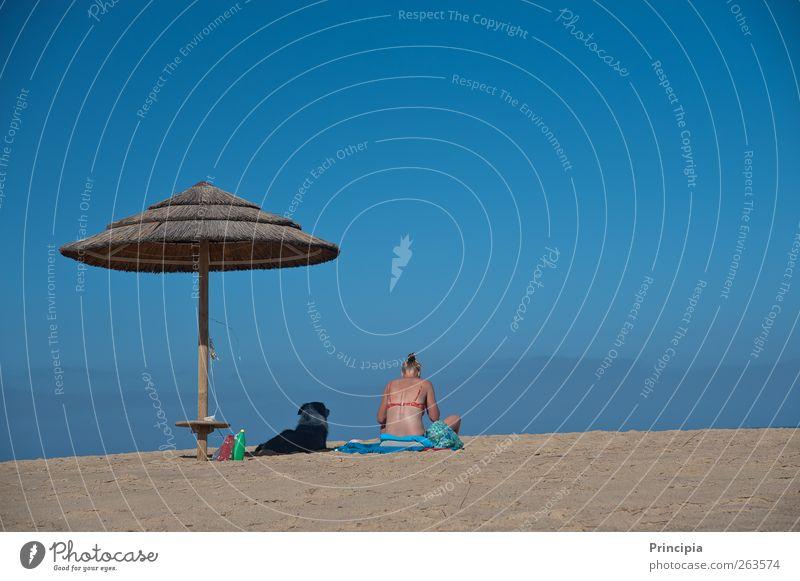zwei am Strand Wellness Erholung Ferien & Urlaub & Reisen Ferne Sommer Sonnenbad Meer feminin Frau Erwachsene Haut Rücken 1 Mensch Bikini Hund sitzen blau ruhig