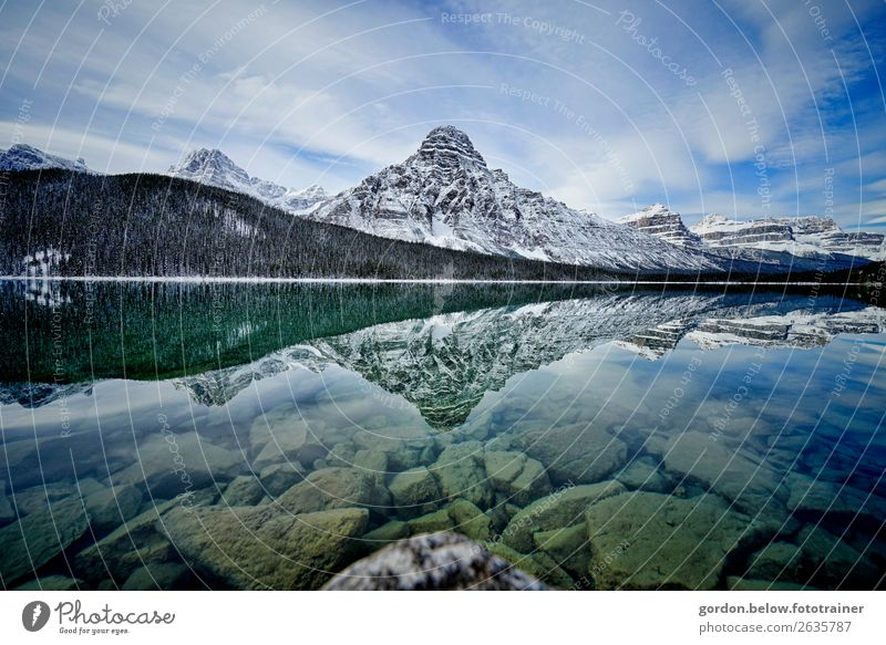 Naturmelodien Landschaft Pflanze Urelemente Wasser Himmel Wolken Baum Felsen Berge u. Gebirge Schneebedeckte Gipfel Flussufer See Stein beobachten ästhetisch