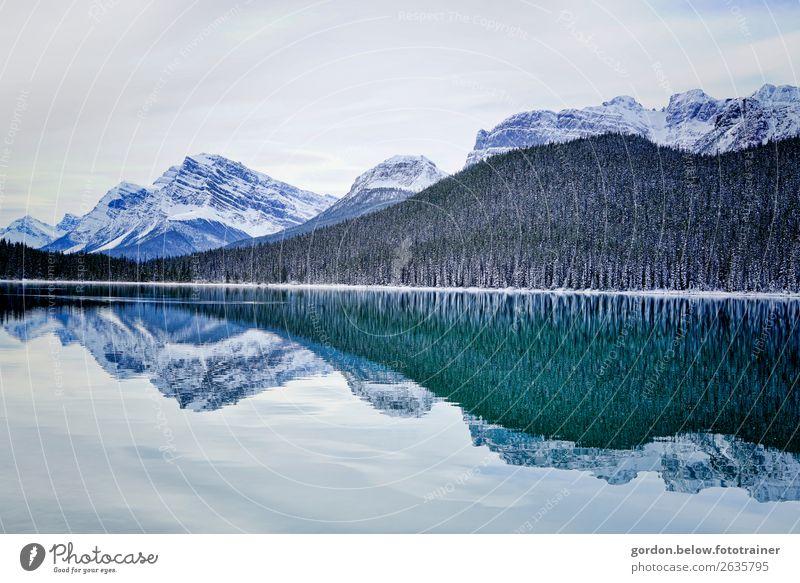 #Kanada/ Linienführung Himmel Natur Wasser Landschaft Baum Einsamkeit Wald Winter Gefühle außergewöhnlich Zufriedenheit Erde Hügel Schneebedeckte Gipfel Bucht