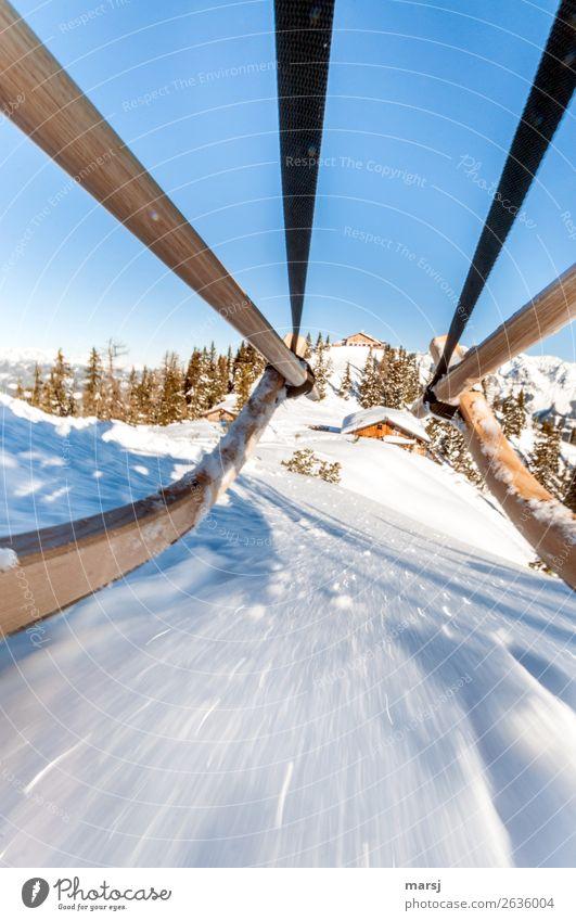 Einen guten Rutsch ins neue Jahr Winter Schnee Winterurlaub Rodeln Unendlichkeit verrückt Hochwurzen Geschwindigkeit Schieflage Neigung Holzrodel Farbfoto