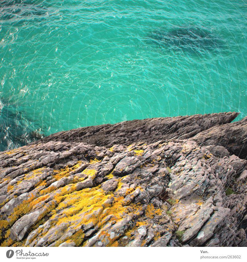 Sprung ins Blaue Ferien & Urlaub & Reisen Sommerurlaub Umwelt Natur Wasser Moos Felsen Wellen Küste Meer Stein frisch nass blau gelb grau türkis Farbfoto