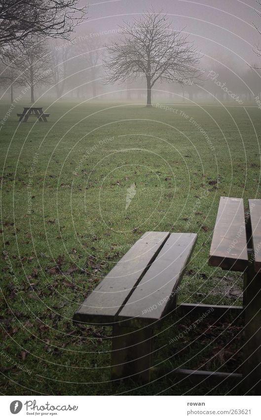 winterpicknick Herbst Winter schlechtes Wetter Unwetter Nebel Garten Park Wiese dunkel kalt grün Picknick Bank nass Holz Tisch Gras ungemütlich Holzbrett Moos