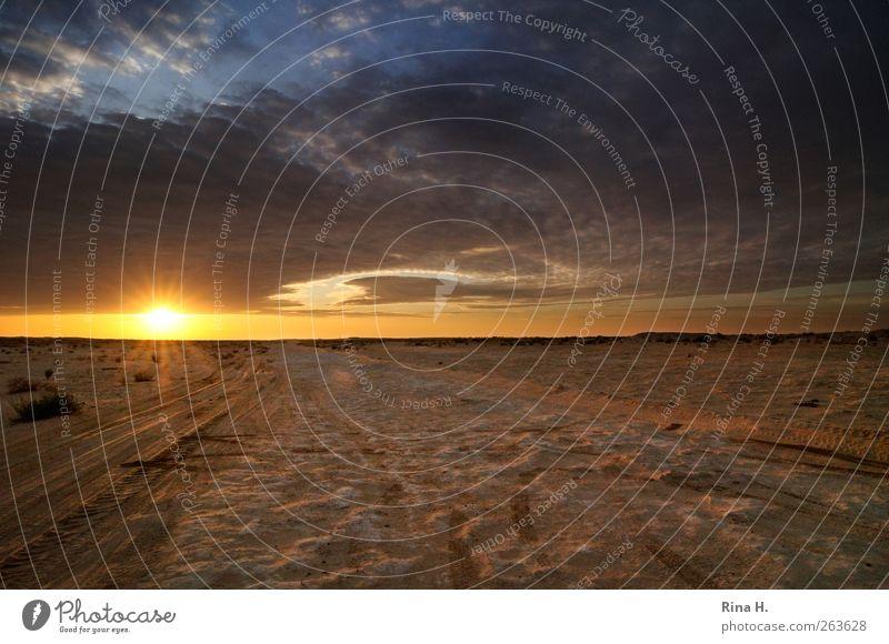 Die ersten Sonnenstrahlen Himmel Natur Ferien & Urlaub & Reisen Sonne Wolken Landschaft Wärme Horizont Beginn Abenteuer Tourismus leuchten Wüste Spuren Expedition Safari