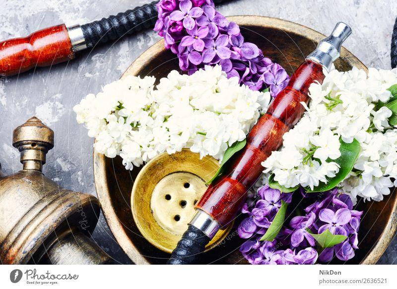 Asiatische Tabakshisha mit blumigem Aroma Wasserpfeifenrauch Blume Fliederbusch Rauch Kräuterbuch geblümt Shisha rauchen Blatt trocknen Mundstück Erholung