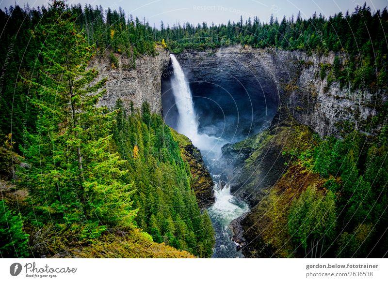 Wasserkraft natürlich! Natur Landschaft Pflanze Urelemente Erde Sand Himmel Herbst Schönes Wetter Baum Gras Moos Wildpflanze Felsen Flussufer Bucht Wasserfall