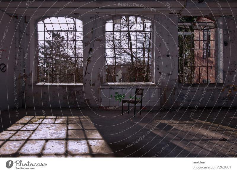 Fensterplatz Menschenleer Haus Industrieanlage Fabrik Mauer Wand braun grau warten Kot Fliesen Schattenseite Schattenspiel Ruine Sonnenschein Farbfoto