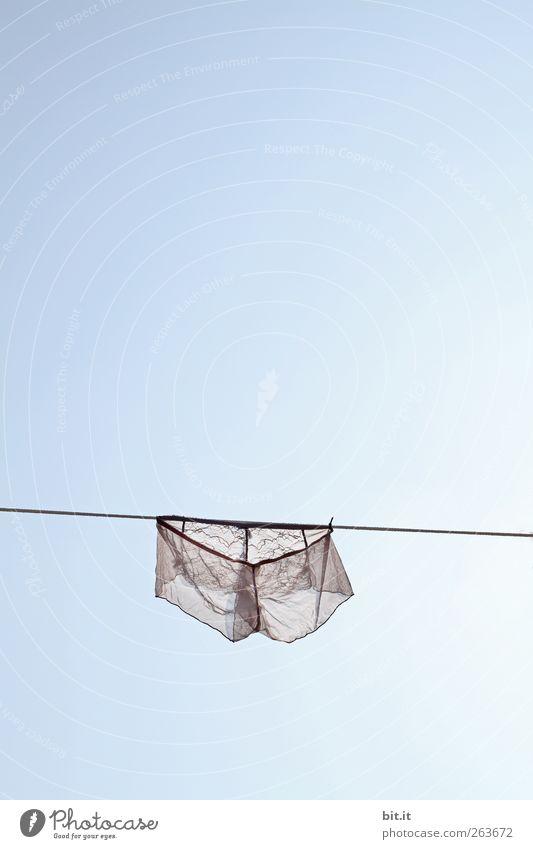 leichte Brise... Himmel Natur blau weiß Umwelt Erotik oben Luft rosa Klima nass Seil Bekleidung Urelemente Spitze Sauberkeit
