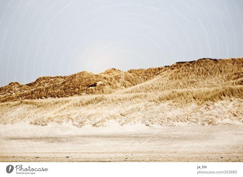 Norsee II Sand Ferien & Urlaub & Reisen Nordsee Dünengras Gezeiten Ebbe Flut Strand Ferne ruhig Meer Heide Wind Sonnenlicht Spaziergang wandern Drachenfliegen