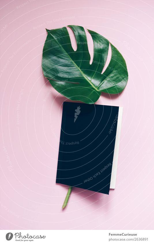 Stem and leaf of a monstera lying in a book Pflanze grün Blatt schwarz rosa Design modern Kreativität Buch Papier Stengel Schreibwaren Pflanzenteile