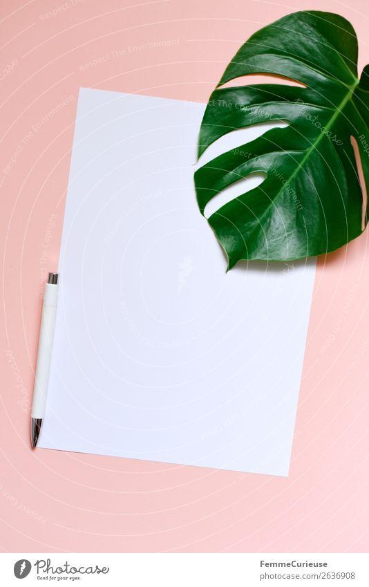 Paper & the leaf of a monstera on salmon-colored background Schreibwaren Papier Zettel Kreativität Fensterblätter Pflanze Pflanzenteile Kugelschreiber rosa