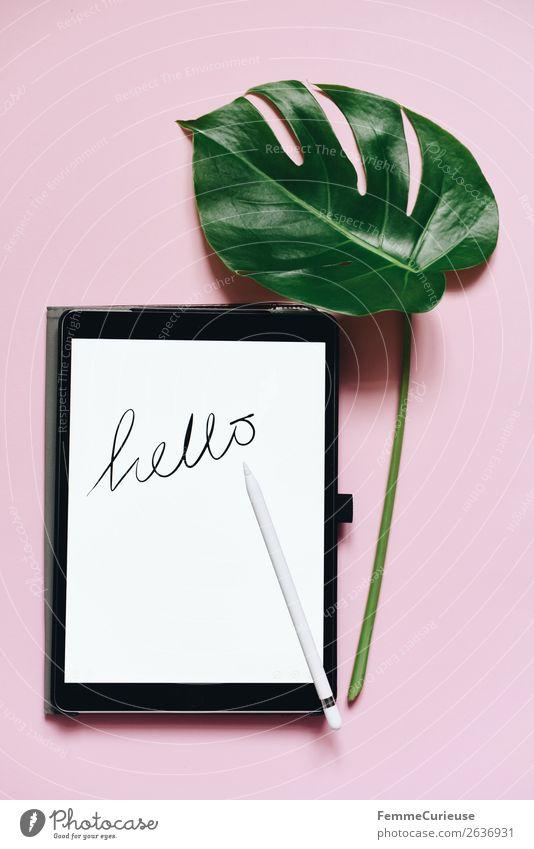 """Tablet with a handwritten """"hello"""" on pink background grün weiß Blatt rosa Design Dekoration & Verzierung Schriftzeichen Technik & Technologie Kreativität"""