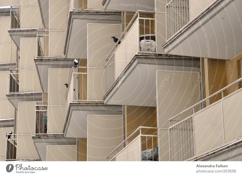 Mit Balkon. Haus Architektur Gebäude trist viele Bauwerk Geländer eng anonym Plattenbau eckig Nachbar eingeengt Mehrfamilienhaus Urbanisierung