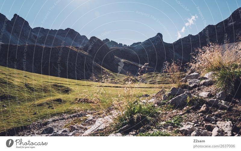 Blick Richtung Seescharte Natur Ferien & Urlaub & Reisen Sommer grün Landschaft Einsamkeit Berge u. Gebirge Umwelt natürlich wandern Idylle Abenteuer Sträucher