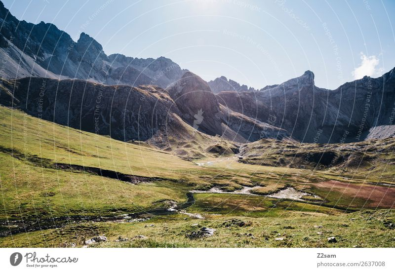 Blick zur Seescharte Ferien & Urlaub & Reisen Abenteuer wandern Natur Landschaft Sonne Sommer Schönes Wetter Wiese Alpen Berge u. Gebirge Gipfel gigantisch hoch