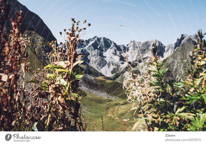 Lechtaler Alpen Abenteuer wandern Umwelt Natur Landschaft Sommer Schönes Wetter Sträucher Berge u. Gebirge nachhaltig natürlich grün Einsamkeit Idylle