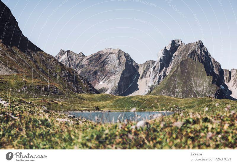 Unterer Seewiesee | Lechtaler Alpen Abenteuer wandern Natur Landschaft Sommer Schönes Wetter Wiese Berge u. Gebirge Gipfel Gebirgssee natürlich grün Einsamkeit