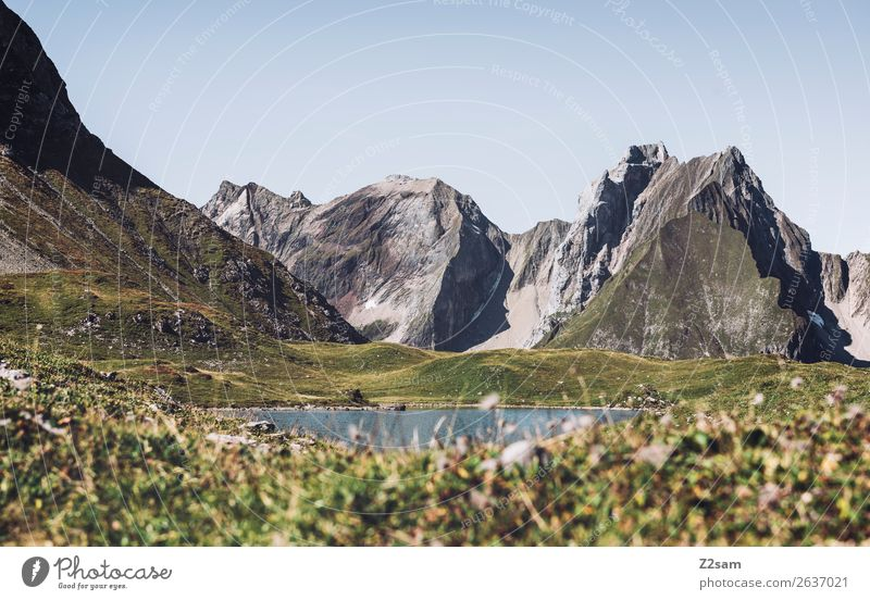 Unterer Seewiesee | Lechtaler Alpen Natur Sommer grün Landschaft Erholung Einsamkeit Berge u. Gebirge Umwelt natürlich Wiese wandern Idylle Abenteuer