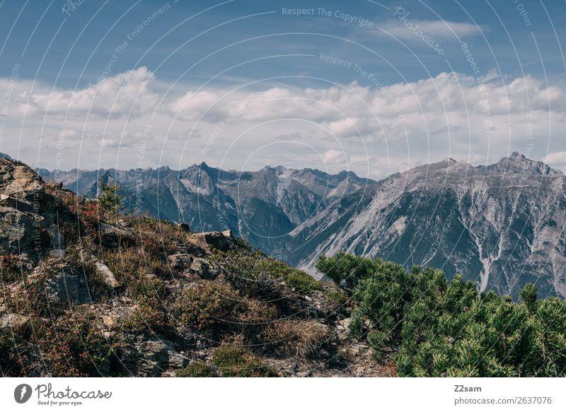 Blick vom Venetberg Richtung Zams wandern Umwelt Natur Landschaft Himmel Sommer Schönes Wetter Sträucher Alpen Berge u. Gebirge Gipfel ästhetisch nachhaltig