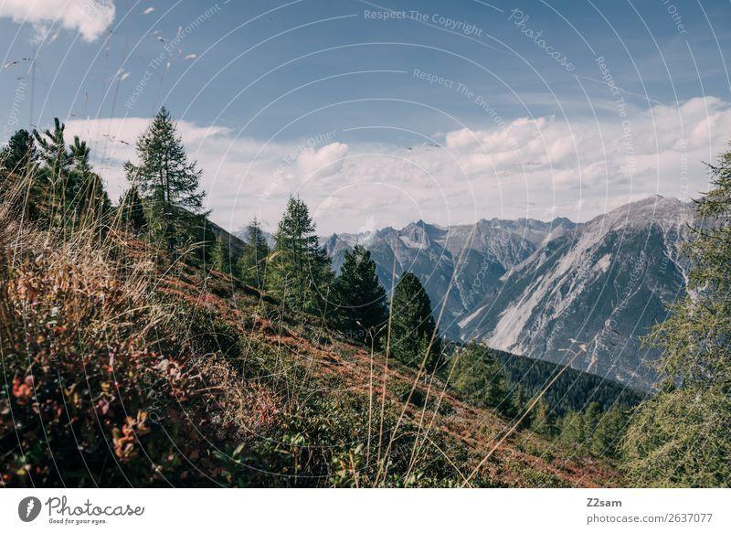 Blick vom Venusberg Richtung Zams   AT Himmel Natur Sommer blau Farbe grün Landschaft Wolken Wald Berge u. Gebirge Herbst Umwelt natürlich wandern Sträucher