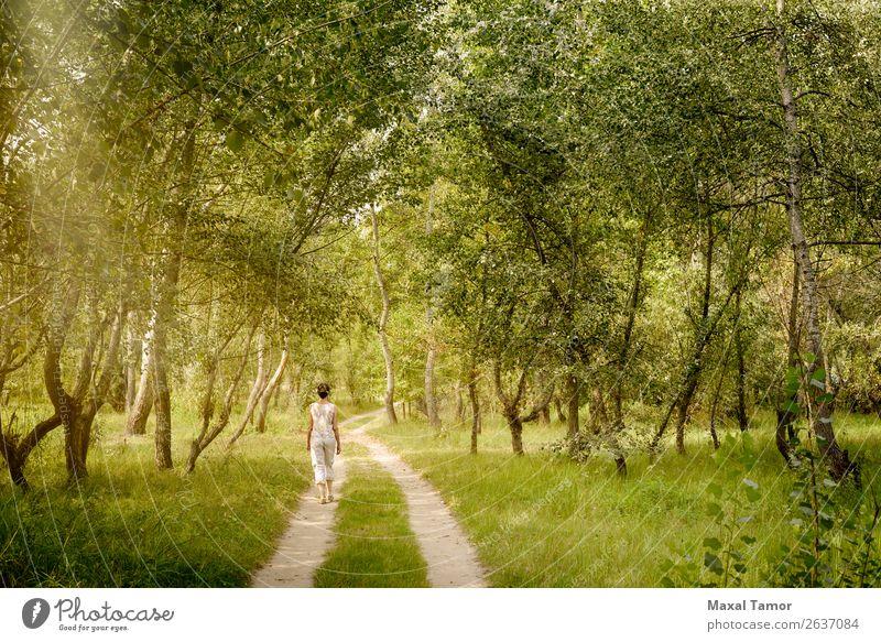 Erwachsene Frau geht im Wald spazieren. Lifestyle Freude Glück schön Freizeit & Hobby Ferien & Urlaub & Reisen Abenteuer Freiheit Sommer Sonne wandern Mensch
