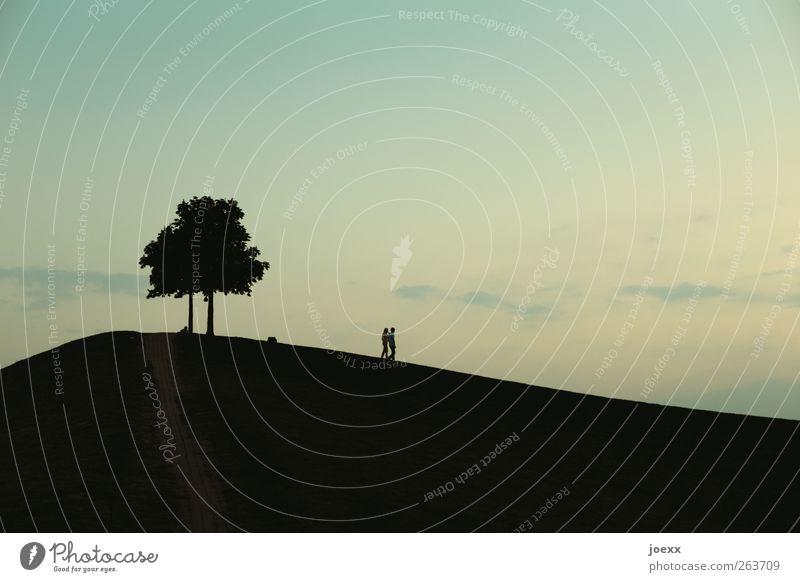 Weg Mensch Paar 2 Natur Himmel Sommer Schönes Wetter Baum Hügel gehen blau gelb schwarz Gefühle Zusammensein Romantik trösten ruhig Freundschaft Liebe Farbfoto