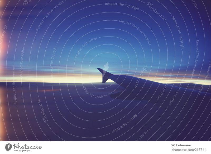 L Flugzeug Farbfoto Außenaufnahme Menschenleer Dämmerung Flugzeugausblick über den Wolken Tragflächenspitze Unschärfe blau Himmel Wolkendecke