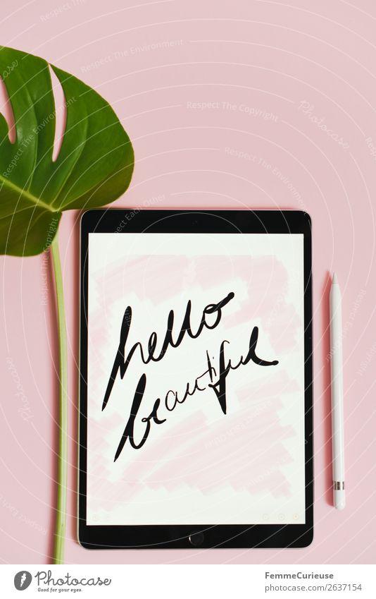 """Tablet with a handwritten """"hello beautiful!"""" on pink background Natur Pflanze schön grün weiß Blatt rosa Design modern Kommunizieren Stengel Tablet Computer"""