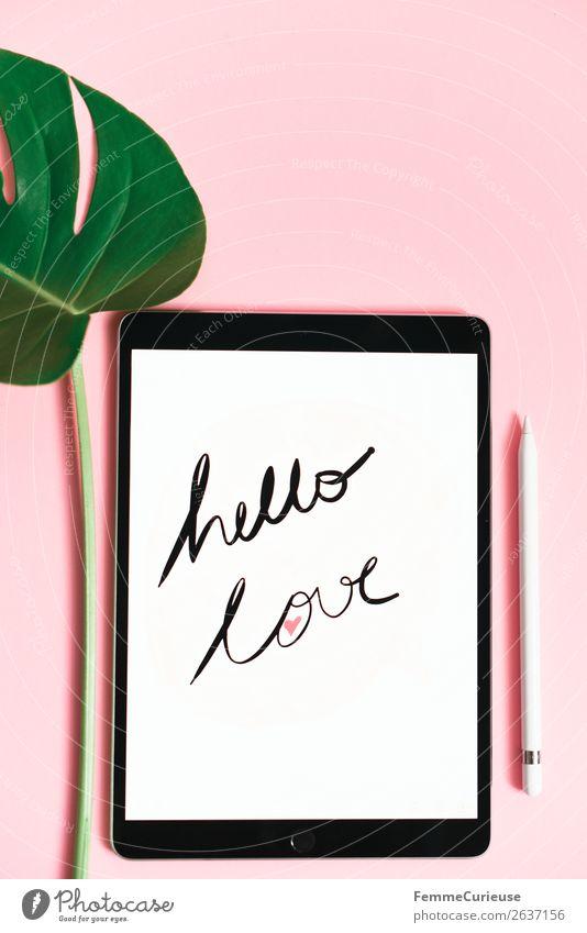 """Tablet with a handwritten """"hello love"""" on pink background Pflanze grün weiß Blatt Lifestyle rosa Dekoration & Verzierung modern Schriftzeichen"""
